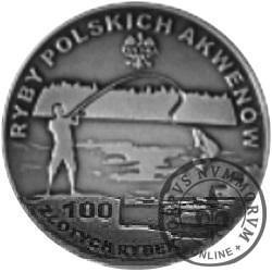 100 złotych rybek (Ag oksydowane) - XVIII emisja / KARAŚ SREBRZYSTY
