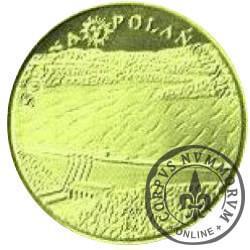 1 zakapior 2012 / SOLINA (mosiądz)