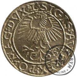 eDukat (typ II / Zygmunt II August, półgrosz)