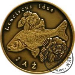 10 złotych rybek (mosiądz patynowany) - XXXVI emisja / JAŹ