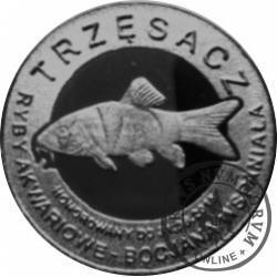 10 złotych rybek - Pomorze Zachodnie / Trzęsacz ~ Bocjana wspaniała (VIII emisja - alpaka oksydowana)