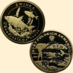10 złotych rybek (mosiądz) - XXIV emisja / ŚWINKA
