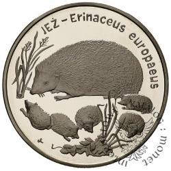 20 złotych - jeż