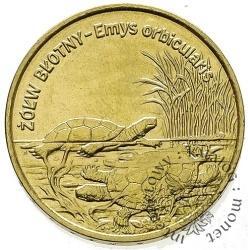 2 złote - żółw błotny