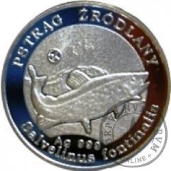100 złotych rybek (Ag) - XXXII emisja / PSTRĄG ŹRÓDLANY st. lustrzany