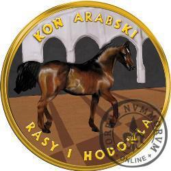 3 bory (mosiądz z tampondrukiem) - Koń arabski