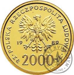 2000 złotych - Jan Paweł II