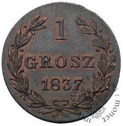 1 grosz - MW