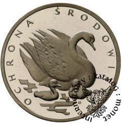 500 złotych - łabądź