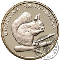 500 złotych - wiewiórka