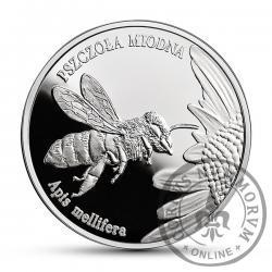 20 złotych - pszczoła miodna
