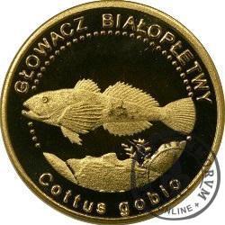 10 złotych rybek (mosiądz) - LV emisja / GŁOWACZ BIAŁOPŁETWY