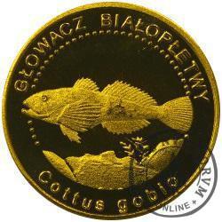 10 złotych rybek (mosiądz patynowany) - LV emisja / GŁOWACZ BIAŁOPŁETWY