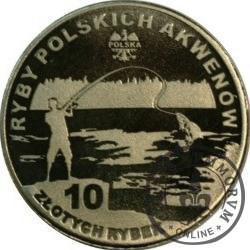 10 złotych rybek (alpaka) - LV emisja / GŁOWACZ BIAŁOPŁETWY