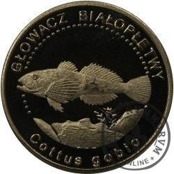 10 złotych rybek (alpaka oksydowana) - LV emisja / GŁOWACZ BIAŁOPŁETWY