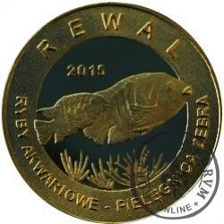10 złotych rybek - Pomorze Zachodnie / Rewal ~ Pielęgnica zebra (II emisja - mosiądz patynowany)