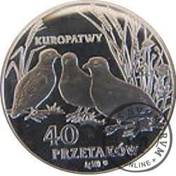 40 przetaków - Kuropatwy