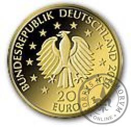 20 euro - Dąb