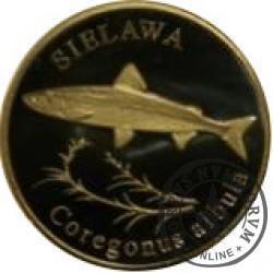 10 złotych rybek (mosiądz patynowany) - XLVI emisja / SIELAWA