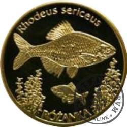 10 złotych rybek (mosiądz) - XXVII emisja / RÓŻANKA