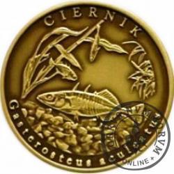 10 złotych rybek (mosiądz patynowany) - XXXVIII emisja / CIERNIK