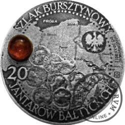 20 jantarów bałtyckich (ELBLĄG) / WZORZEC PRODUKCYJNY DLA MONETY (miedź srebrzona oksydowana + bursztyn)