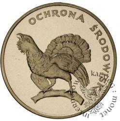 100 złotych - głuszec