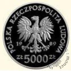 5000 złotych - polscy żołnierze na frontach II wojny światowej