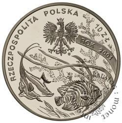 10 złotych -  M. Siedlecki