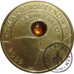 1 amber (mosiądz) - SZLAK BURSZTYNOWY NADWIŚLAŃSKI