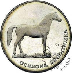 100 złotych - koń