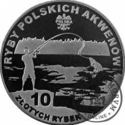 10 złotych rybek (alpaka) - XXVIII emisja / STRZELBA POTOKOWA