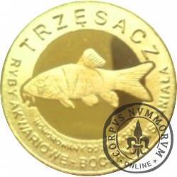 10 złotych rybek - Pomorze Zachodnie / Trzęsacz ~ Bocjana wspaniała (VIII emisja - mosiądz pozłacany)
