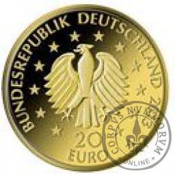 20 euro - Sosna