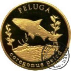 10 złotych rybek (mosiądz) - XLV emisja / PELUGA