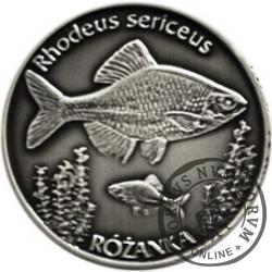 100 złotych rybek (Ag oksydowane) - XXVII emisja / RÓŻANKA