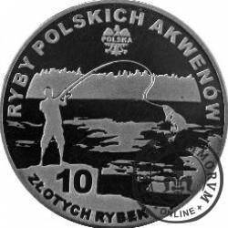 10 złotych rybek (alpaka) - XIX emisja / TOŁPYGA BIAŁA