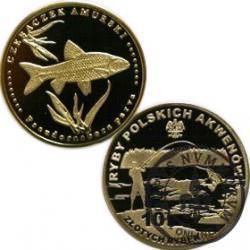 10 złotych rybek (mosiądz) - XXXIX emisja / CZEBACZEK AMURSKI