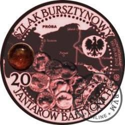 20 jantarów bałtyckich (BYDGOSZCZ) / WZORZEC PRODUKCYJNY DLA MONETY (miedź patynowana + bursztyn)