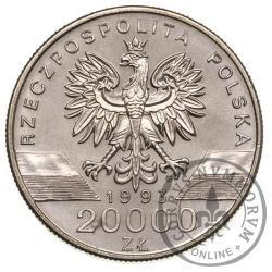 20 000 złotych - jaskółki